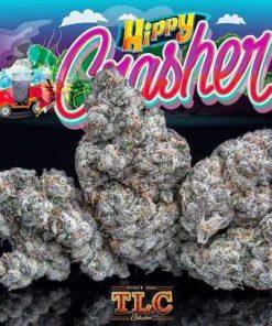Buy Jungle Boys Hippy Crasher Online