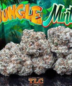 Jungle Mints